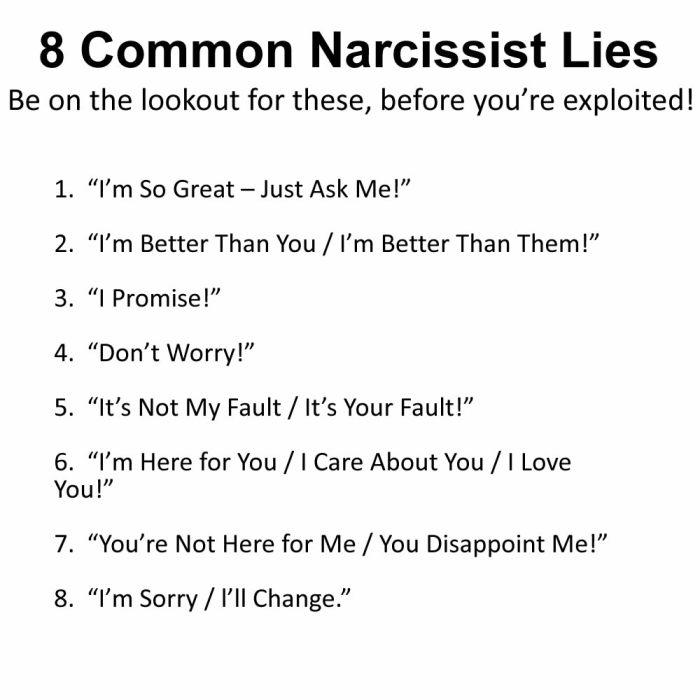 8 Narcissist Lies